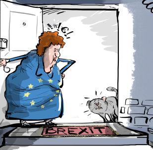Il gatto di Brexit