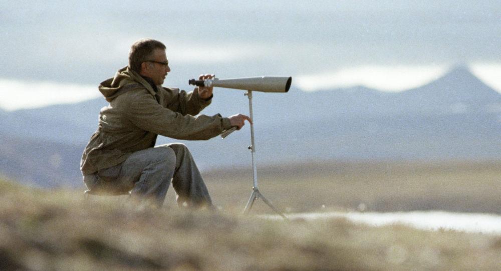 Ornitologo studia le oche bianche al parco naturale isola di Wrangel