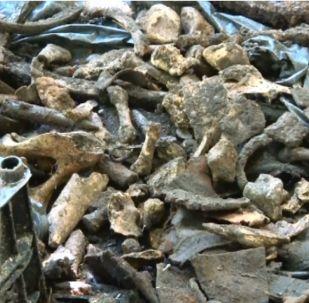 Russia: i resti dei soldati sovietici trovati a Voronezh