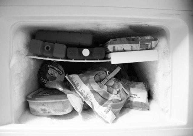 Congelatore di frigorifero