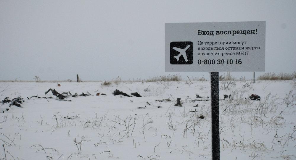 Luogo dello schianto del Boeing della Malaysian Airlines