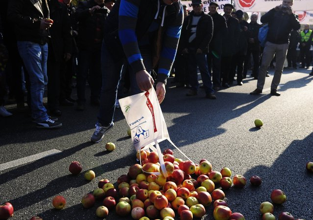 Proteste degli agricoltori contro le sanzioni in Polonia (foto d'archivio)