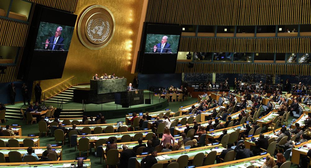 Assemblea Generale delle Nazioni Unite