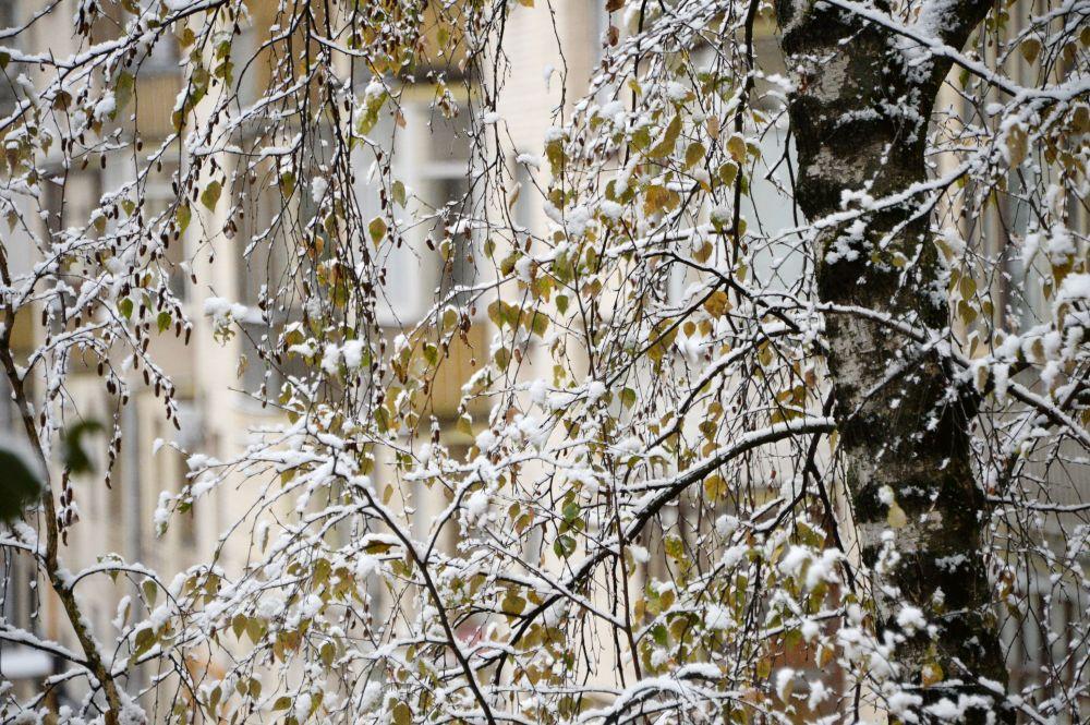 La prima neve a Mosca.