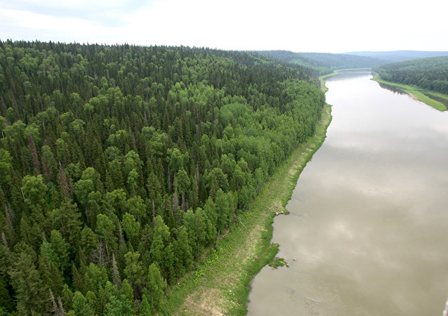 La tundra siberiana lungo il corso del fiume Enisey.