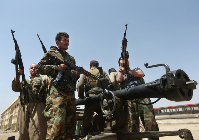 Combattenti curdi