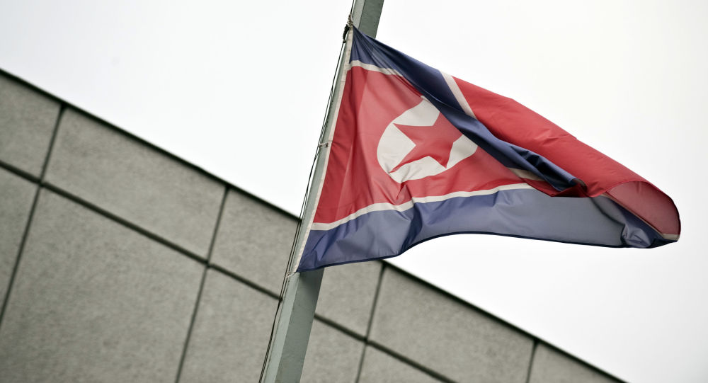 Bandiera della Corea del Nord