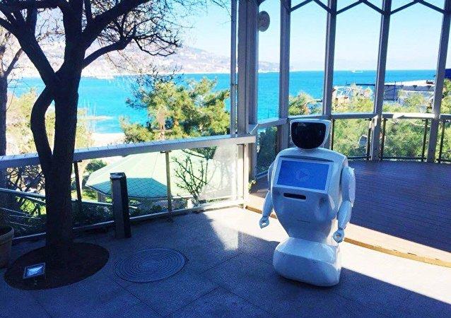 Robot accoglie i clienti di un locale in Crimea