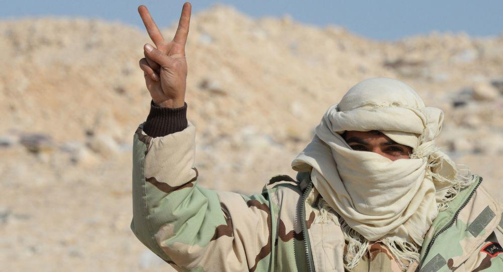 Miliziano filo-Assad a Palmira