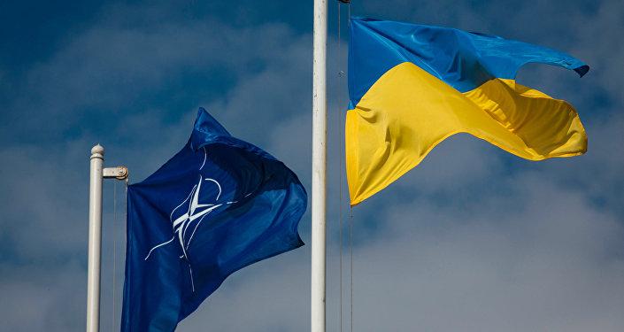 Bandiere dell'Ucraina e della NATO