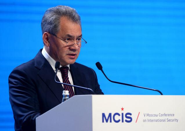 Ministro della Difesa Sergey Shoigu