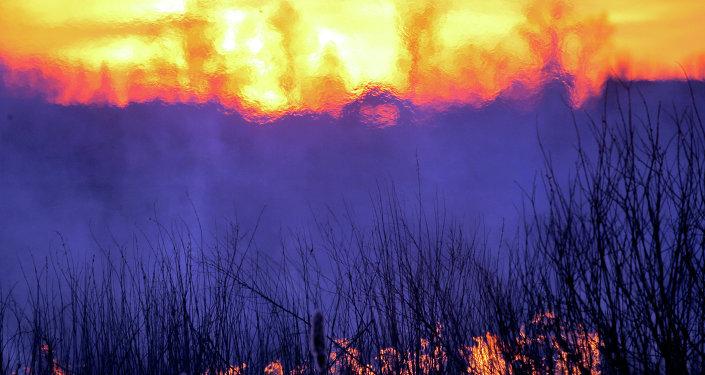 La campagna intorno a Gomel, Bielorussia, una delle zone investite dalle radiazioni