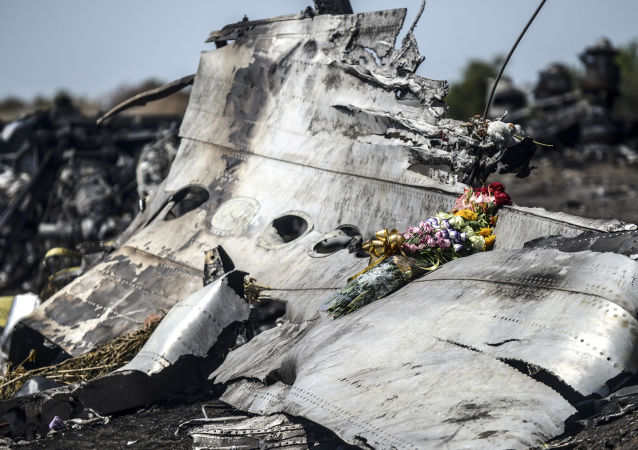 Macerie del Boeing MH17 malese
