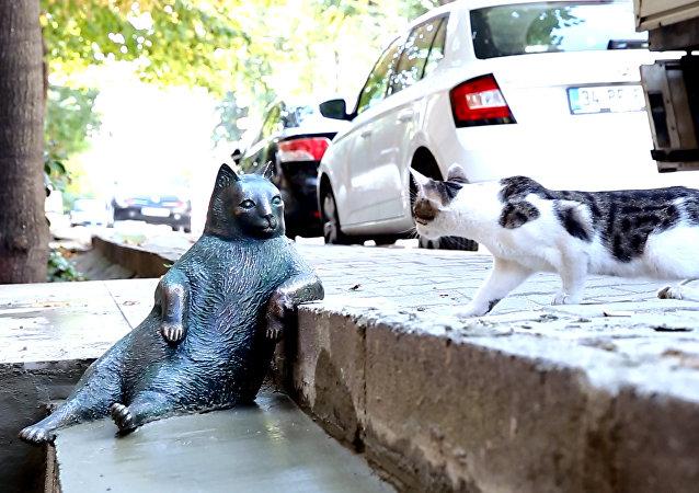 Il monumento al gatto Tombili in Turchia.