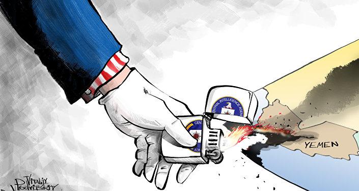 Yemen, Wikileaks