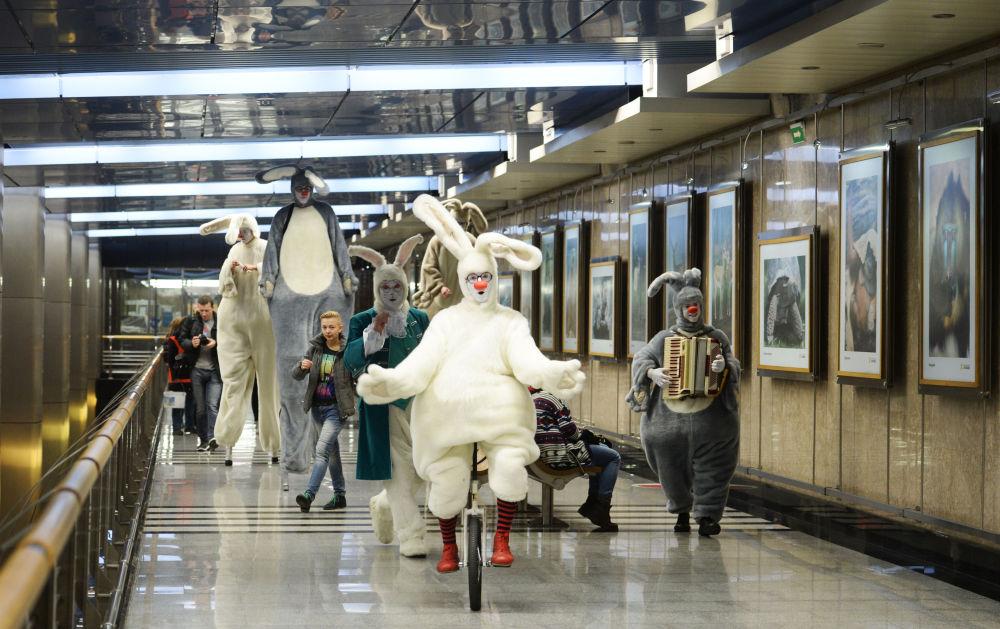 Apertura dell'esposizione 150 anni del Giardino Zoologico di Mosca alla stazione Vystavochnaya.