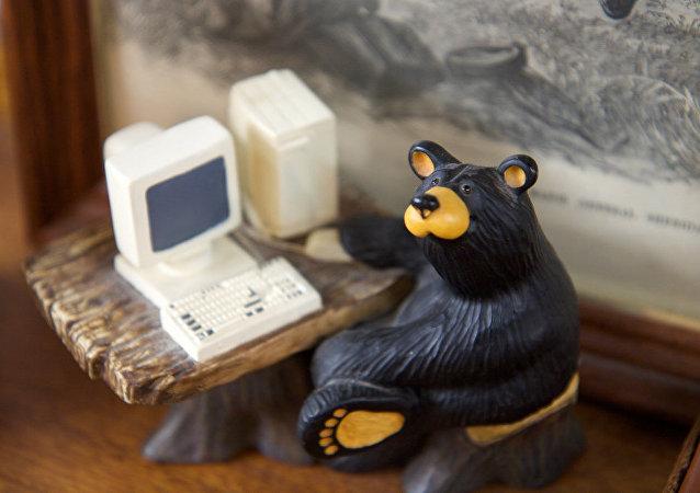 Orso hacker