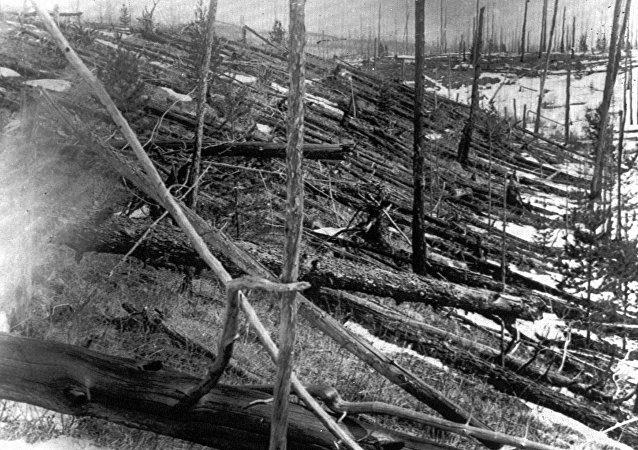 Conseguenze dell'impatto di un meteorite a Tunguska (Russia)