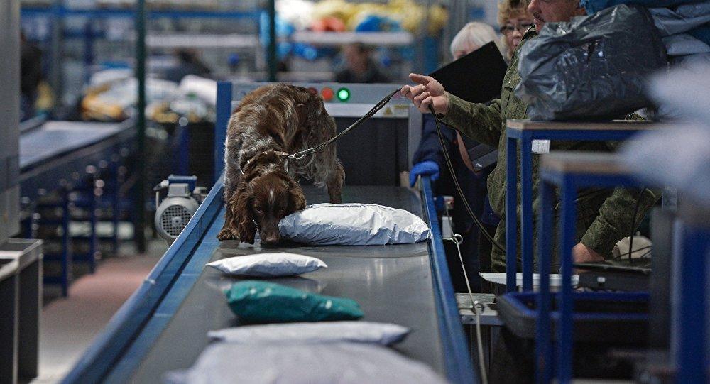 Controlli anti-droga in Russia (foto d'archivio)