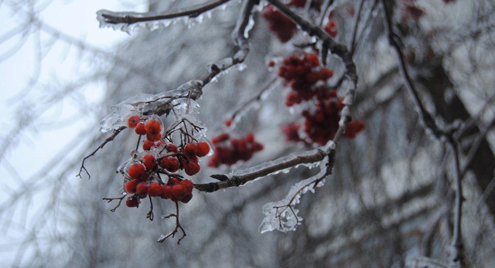 Pioggia gelata a Mosca