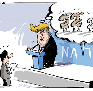 Trump al summit NATO