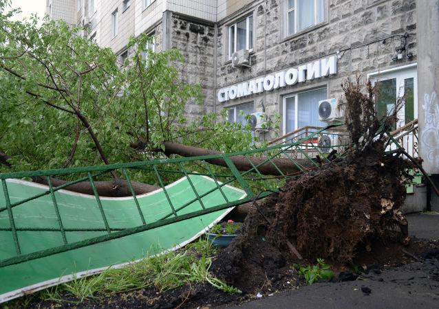 Le conseguenze dell'uragano a Mosca.