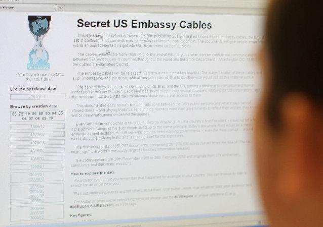 Pagina del sito Wikileaks