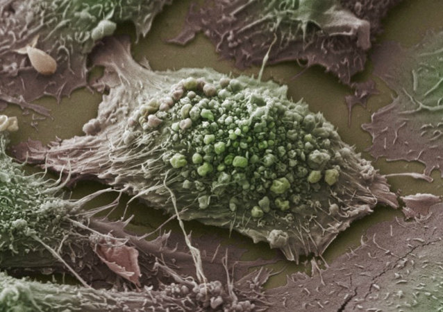 Scientists are hailing a breakthrough in cancer treatment they hope will usher in a new era for those battling the disease by using the body's own immune system to attack cancerous cells.