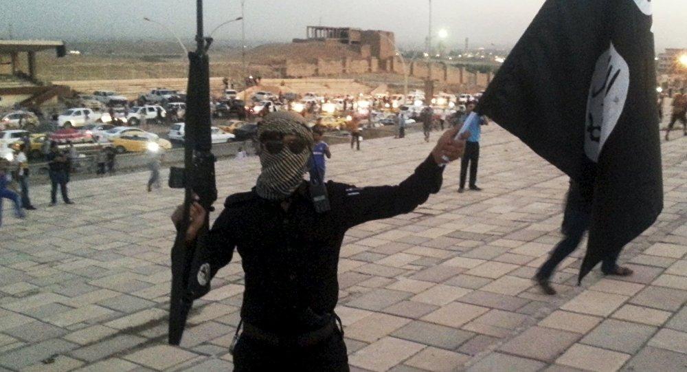 Combattente del Daesh