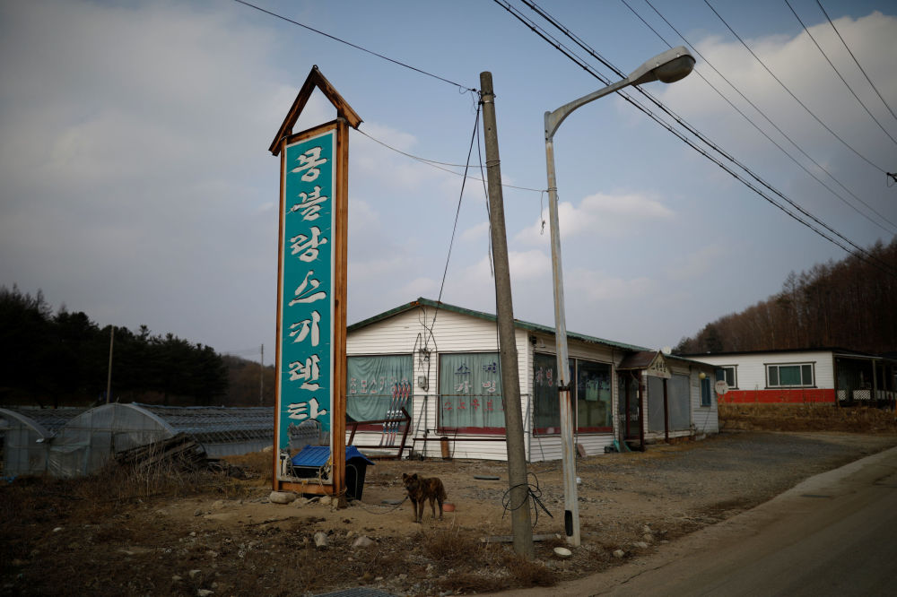 Scene da apocalissi nucleare sulle alpi della Corea
