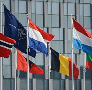 Bandiere dei Paesi membri della NATO