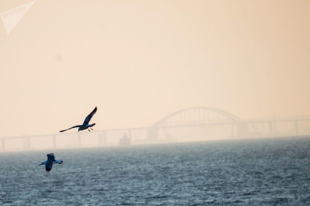 Un mese all'apertura del ponte sullo stretto (di Kerch)