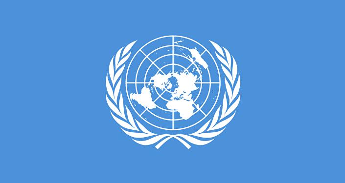 Bandiera delle Nazioni Unite