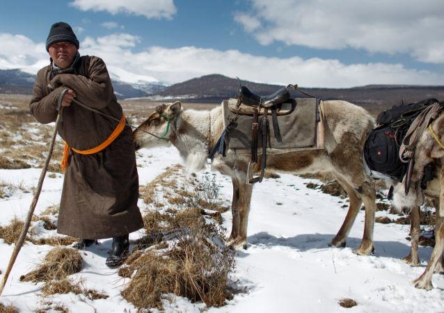 Vita vera: gli allevatori di renne in Mongolia