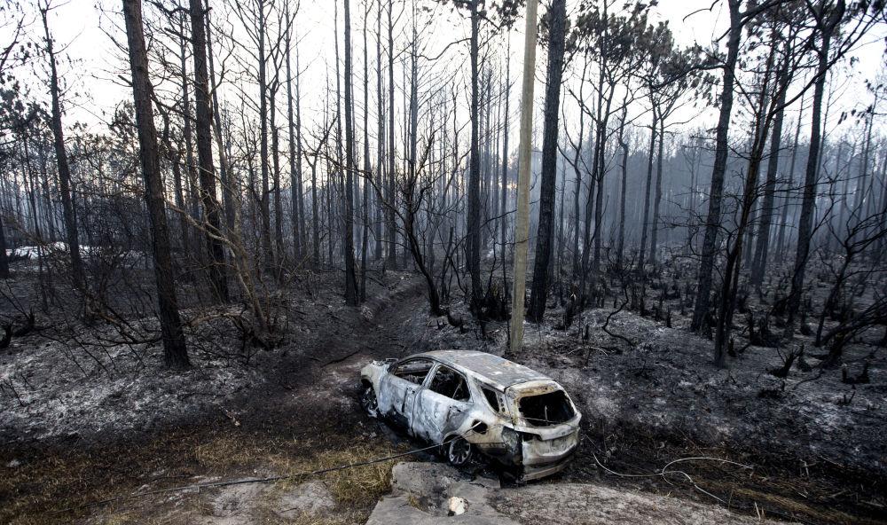 Una macchina bruciata nell'incendio boschivo a Florida.