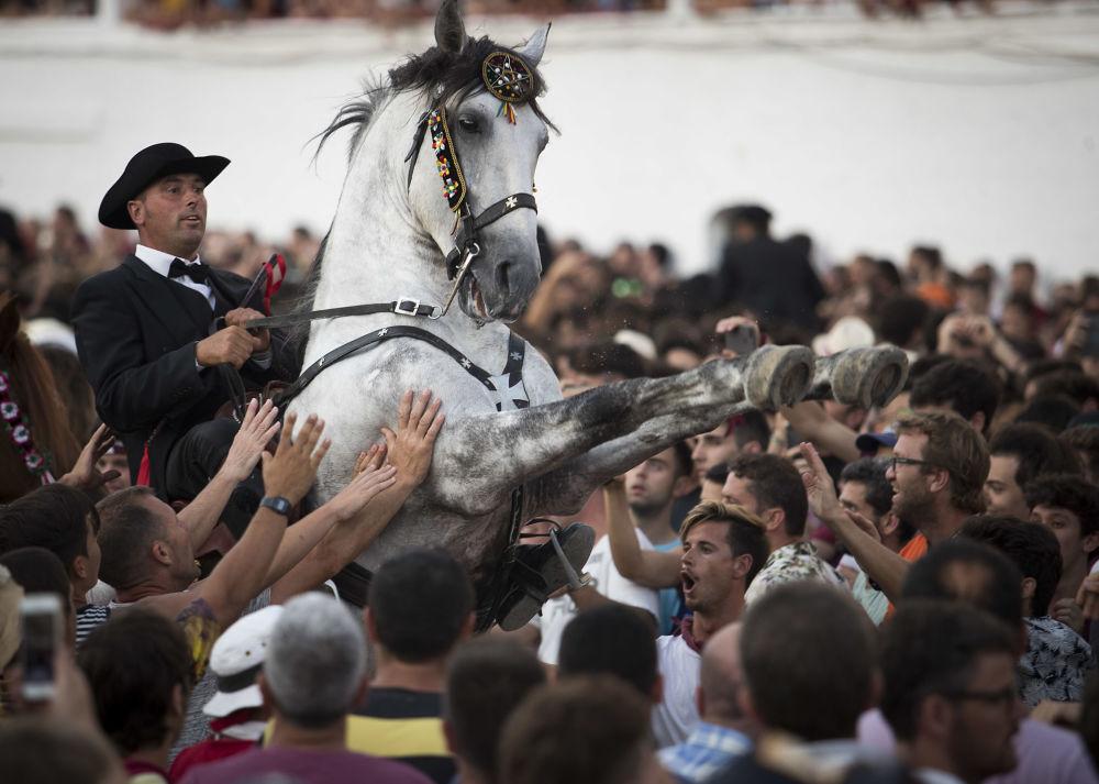 Un cavallo nella folla alla festa tradizionale di San Juan a Minorca, le Isole Baleari.