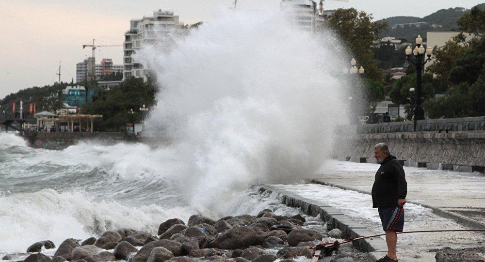 Uno stormo a Yalta
