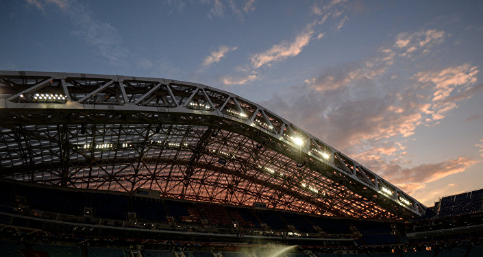Lo stadio Fisht a Sochi