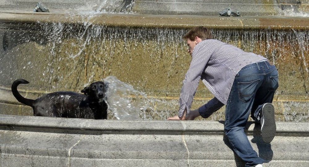 A young man cools off his dog in a fountain in Place Royale in Nantes on June 30, 2015. France is bracing for the thermometer to hit 39 degrees Celsius by the middle of the week, while Britain will have to contend with temperatures in the mid-30s.