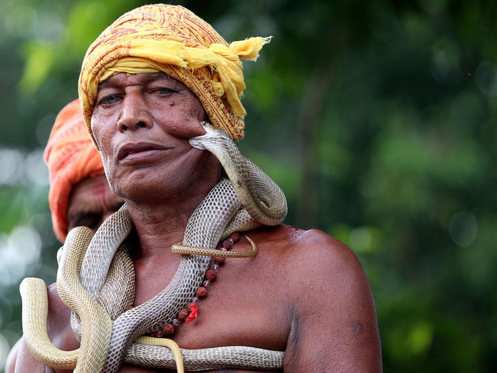 Il festival per Maa Mansa Puja in India