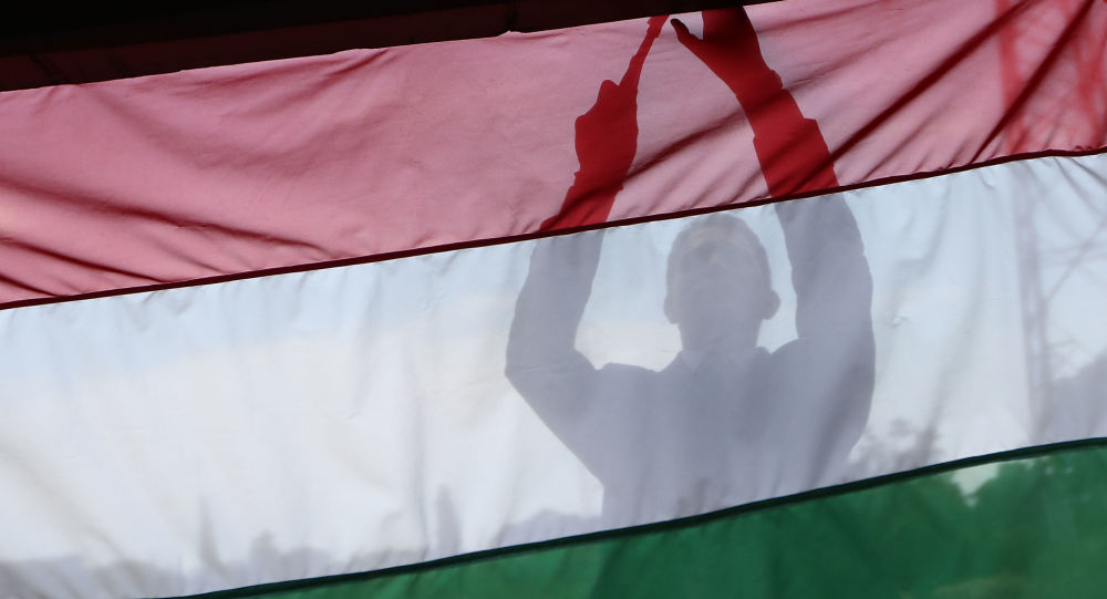 La bandiera dell'Ungheria
