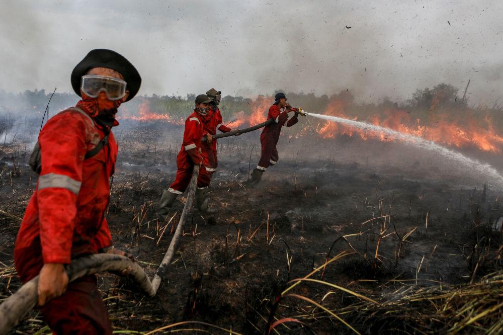 I vigili del fuoco spegnano l'incendio sul campo in Sumatra del Sud, Indonesia.