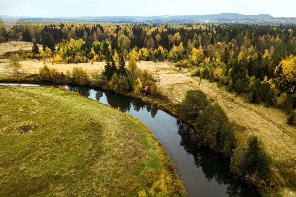 Un bosco d'autunno, il Territorio di Perm'.