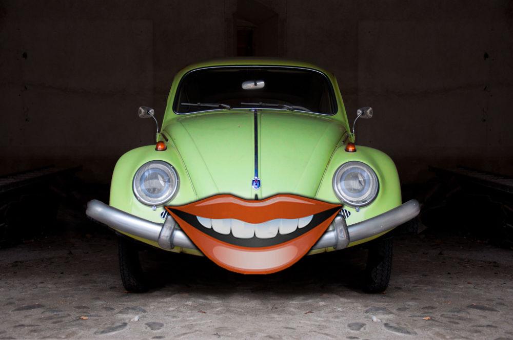 Maggiolino sorridente