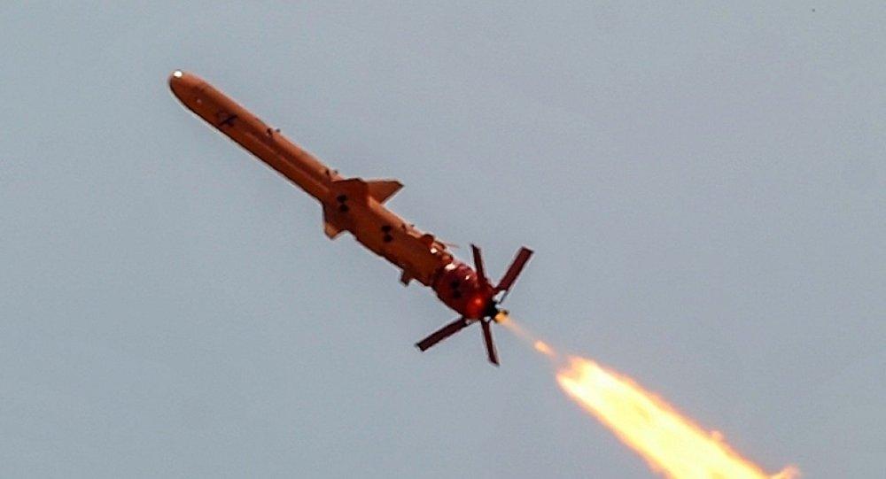 Ukraine's new Neptun cruise missile.