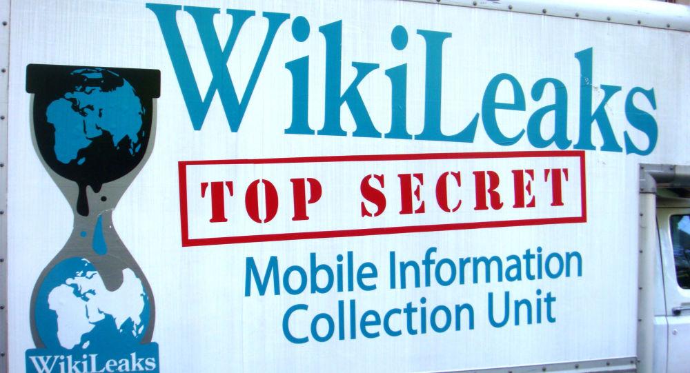 Portale WikiLeaks