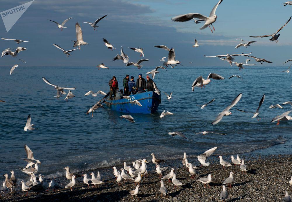 Una pescata nel Mar Nero, Sochi.