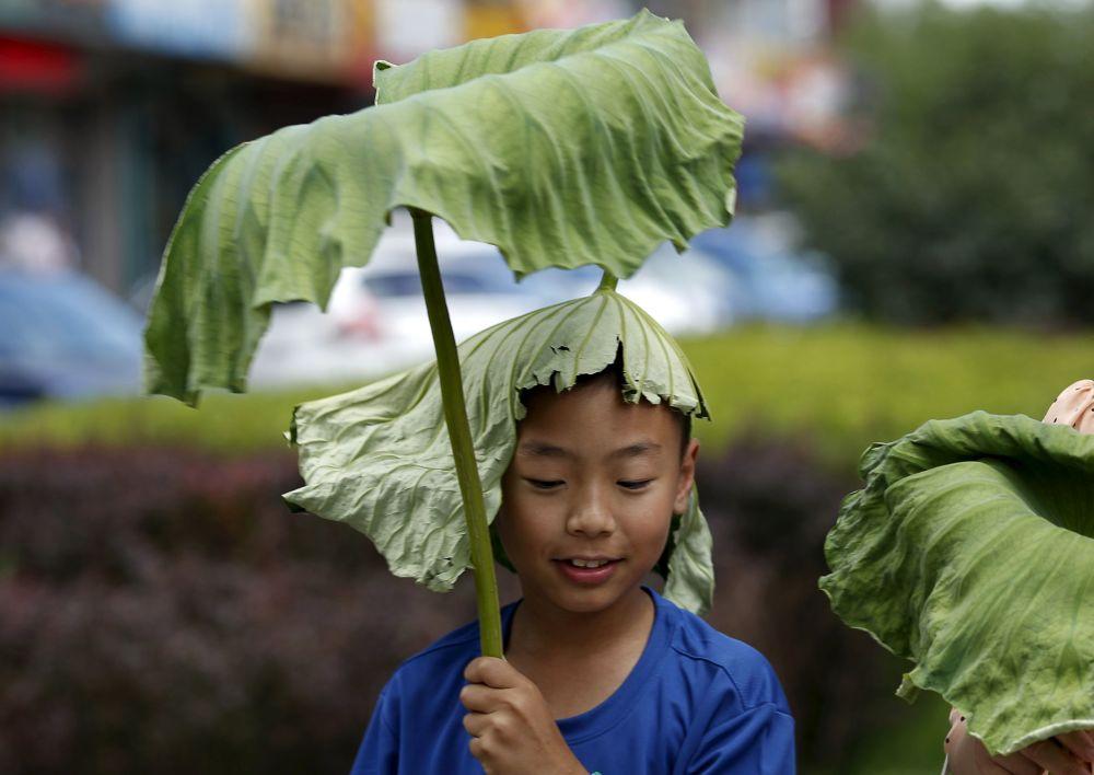 Un ragazzo si copre dalla pioggia con una foglia di loto a Pechino.
