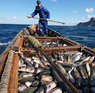 Vivere sulle isole Curili
