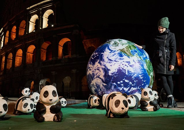 L'azione L'ora della Terra 2018 a Roma